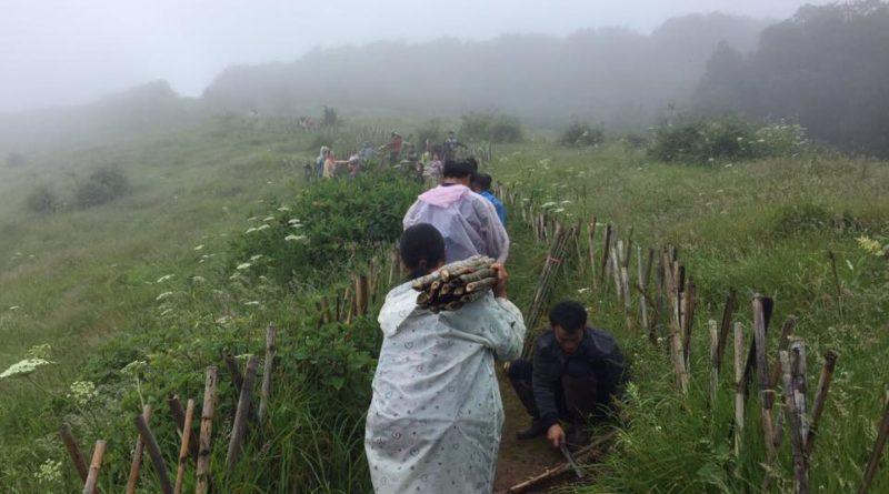 doi-inthanon-national-park