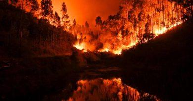 New Portugual wildfire