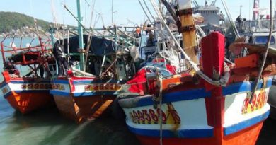 Resized Thai fishing boats