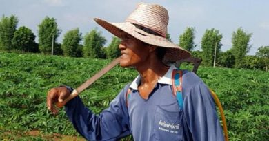 Thai farmer resized
