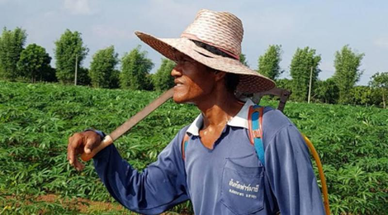 Thai farmer resized