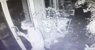 Thief resized