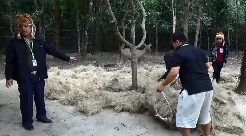 Zoo keeping animals warm