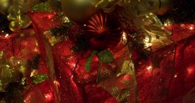 Christmas closeup