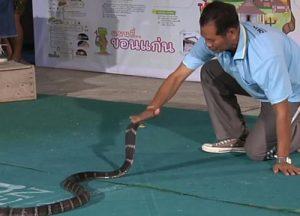 snake trainer (1)
