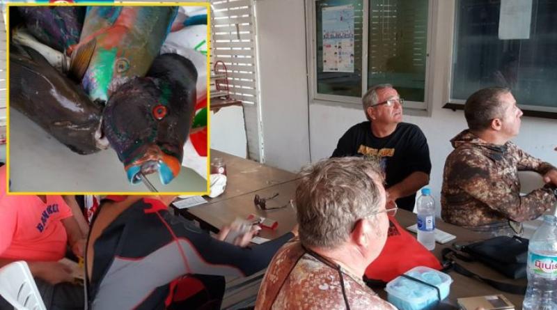 Frenchmen arrested catching parrotfish Phuket