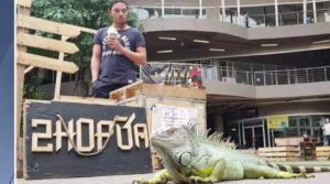An iguana at Pattaya mall