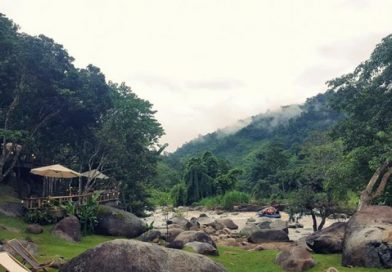 Café in Wild beckons nature lovers