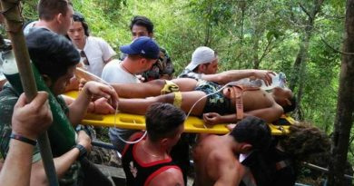 Krabi tourists save teenager's life