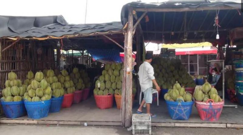Durians for sale in Cambodia
