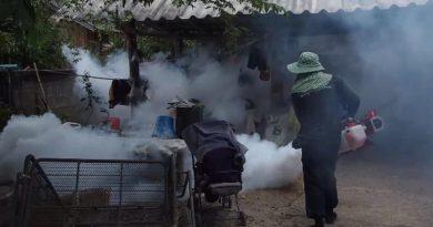 Killing mosquito larvae