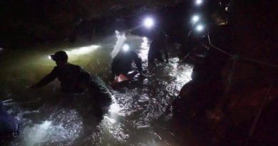 Thai Seals go iinto cave