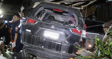 Freak accident SUV knocks down house's wall