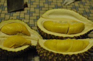 Malay durian