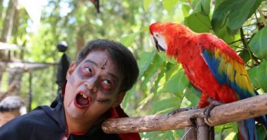 Ubon zoo Halloween festival