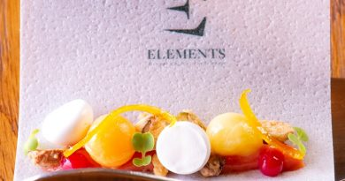 Elements_Tasting Menu_Pre Dessert 2 1