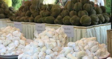 wat-tha-mai-durian-7_1556679145cover
