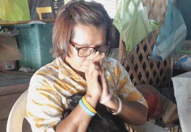 Grandma's grief over dead cats