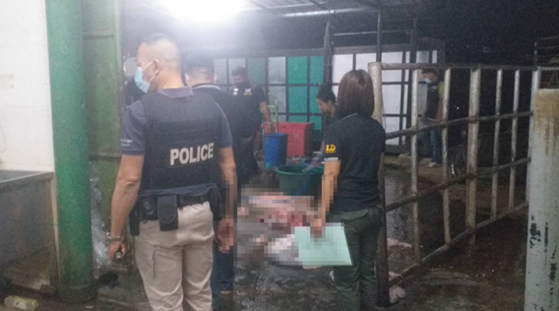 Horse meat gang arrested, product sent to China and Vietnam.