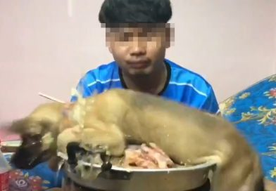 Thai YouTuber receives backlash after throwing dog onto BBQ stove.
